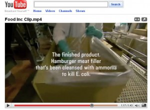 "Scene from the Movie, Food Inc., Showing Manufacture of ""Pink Slime"""